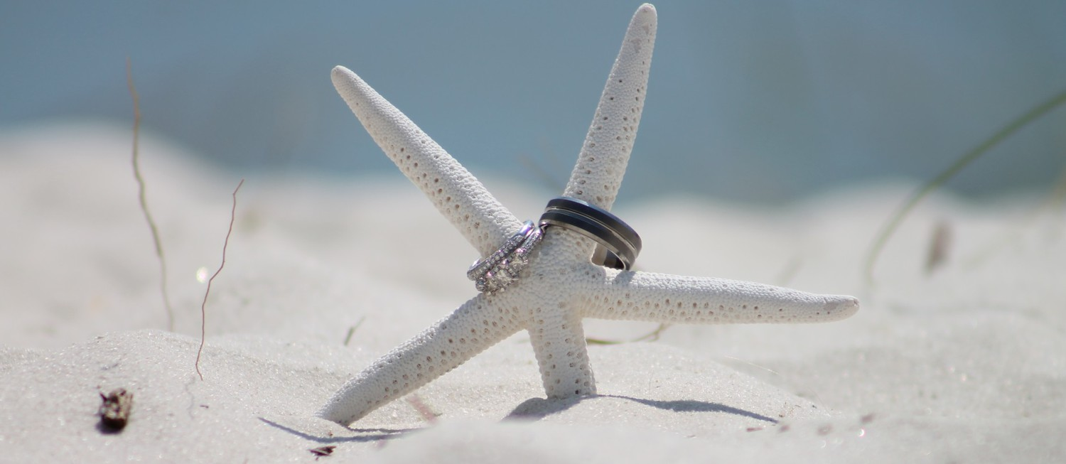 Wedding rings on a starfish in the sand